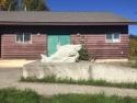 concretesalmon